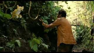 Nonton Sur La Piste Du Marsupilami   Bande Annonce 2 Film Subtitle Indonesia Streaming Movie Download