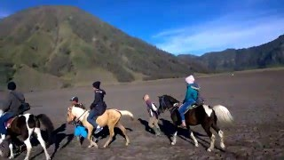 Video Traveling malang : Naik Kuda ke Gunung bromo MP3, 3GP, MP4, WEBM, AVI, FLV Desember 2017