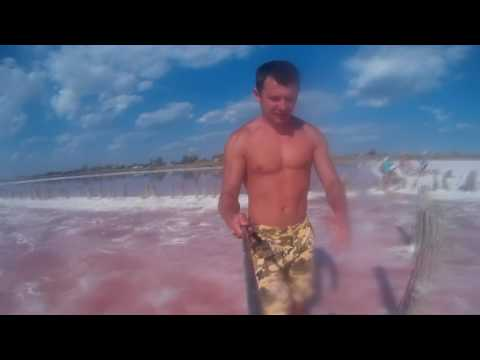 Арабатской стрелке Геническ Соль и розовая рапа - DomaVideo.Ru