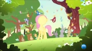 """The episode The Cutie Mark Chronicles offers a glimpse into Fluttershy's past. Like Rainbow Dash, Fluttershy hails from Cloudsdale. As a filly, she was not a very good flier, and was bullied by some of the other ponies, who nicknamed her """"Klutzershy"""". She was taller and ganglier than the other foals, with slightly larger wings. Rainbow Dash, however, stood up for her, and challenged the bullies to a race in which the participants unintentionally knocked Fluttershy down to the ground, a place she had never been before. She was saved from a rough landing by falling onto a large group of butterflies. Upon seeing all the different animals which lived on the ground for the first time, Fluttershy was so overjoyed, she started singing. A few moments later, Rainbow Dash's sonic rainboom scared all the animals away; however, Fluttershy was able to calm them down, and learned that she had a talent for communicating with animals. It was at that point she gained her cutie mark, which was butterflies and a lifelong love of animals."""