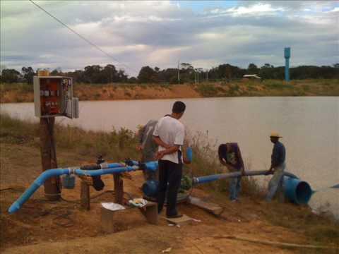 projeto de irrigacao banana catavento - sistemas de irrigacao cuiaba mt irrigacao mato grosso