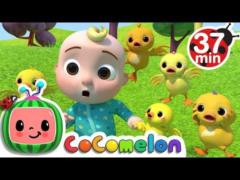 Five Little Ducks 2 | +More Nursery Rhymes & Kids Songs - Cocomelon (ABCkidTV)