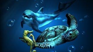 Ocean HD YouTube video