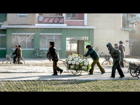 Nordkorea: Schlechteste Ernte seit mehr als zehn Jahren