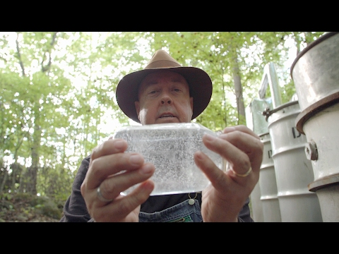 Learn This Simple Trick To Test The Proof Of Moonshine