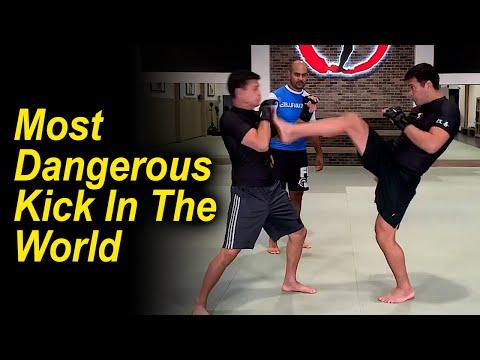 The Most Dangerous Kick In The World (Karate Front Kick) by Former UFC Champion - Lyoto Machida