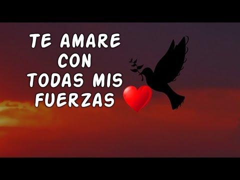Poesias de amor - AMOR Mira Este Vídeo Te Lo Dedico Mi Amor  Poemas de Amor Te Amare con Todas mis Fuerzas