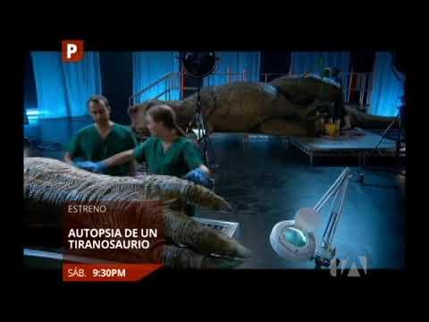 Autopsia de un Tiranosaurio