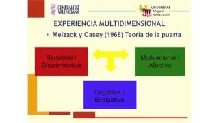Umh4313 2012-13 Lección 012 Tema 7 Intervención Psicológica En Dolor Crónico