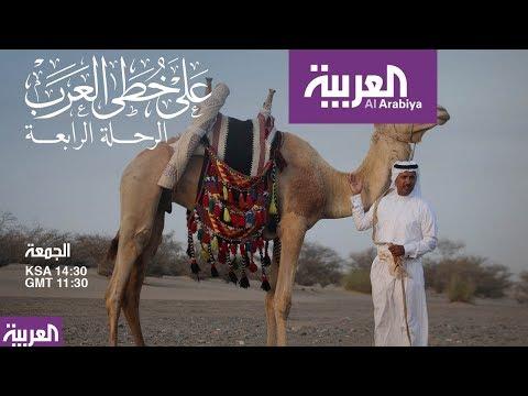 العرب اليوم - بالفيديو: للقصواء حكاية تحكى