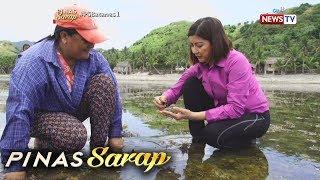 Video Pinas Sarap: Recipe ng Sinabawang Abong, tinikman sa 'Pinas Sarap' MP3, 3GP, MP4, WEBM, AVI, FLV Desember 2018