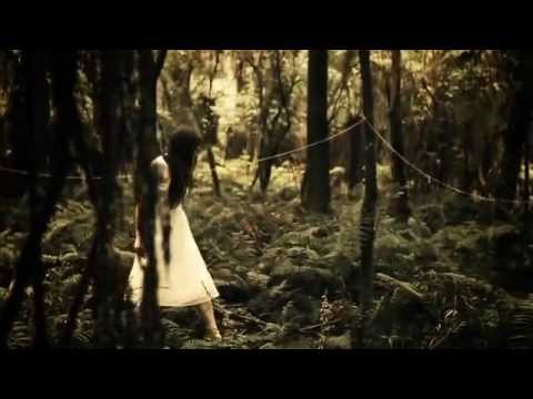 thepaperkitesband - Official music video for 'Bloom'. Directed by Pete Seamons, Concept by Sam Bentley. http://www.facebook.com/thepaperkitesband Download on Itunes from http://...