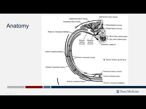 SIR-RFS Webinar Aug 24, 2020: Intercostal Nerve Block: Techniques and Pitfalls