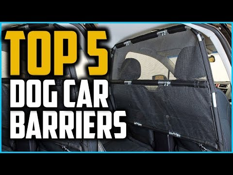 Best Dog Car Barriers  in 2020
