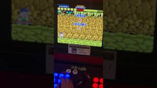 Wonder Boy (Arcade Emulated / M.A.M.E.) by DtM2000