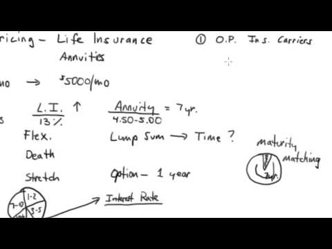 Consumers's Guide to Understanding Option Pricing in Life Insurance