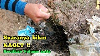 Video Suara Sambaran Belut Babon MP3, 3GP, MP4, WEBM, AVI, FLV Juli 2019