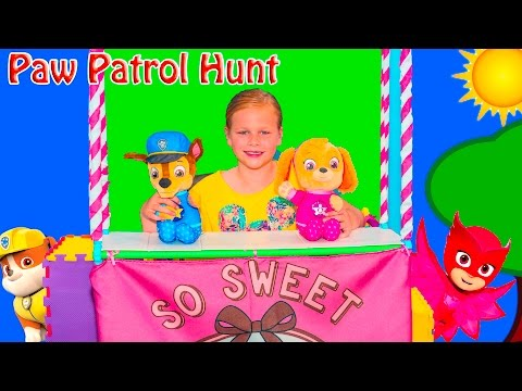 Video Assistant Hunts for Paw Patrol Skye and Chase Toys download in MP3, 3GP, MP4, WEBM, AVI, FLV January 2017