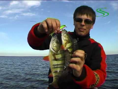 ловля твичингом на мелководье
