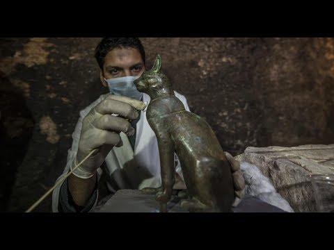 مقبرة القطط.. اكتشاف أثري جديد لفت أنظار العالم