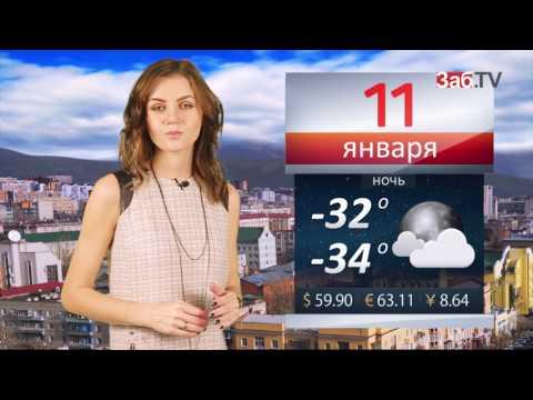 Погода на 11.01.2017 - DomaVideo.Ru