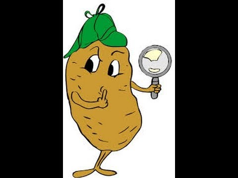 How to stop your windows from fogging up with a potato