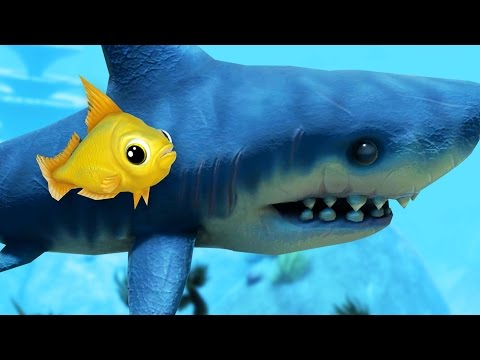 Video shark bodyguard feed and grow fish online for Feed and grow fish online