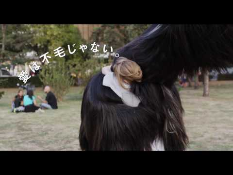 『ありがとう、トニ・エルドマン』【9/2~】