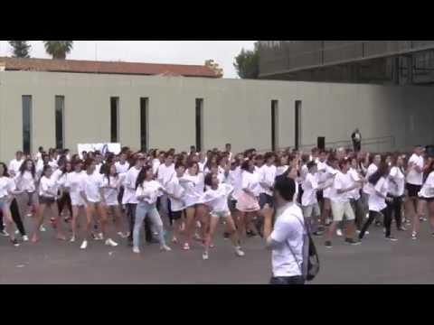 Flashmob Día de Europa