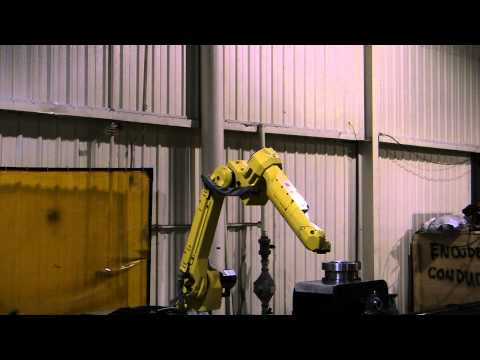 Fanuc M-20iA