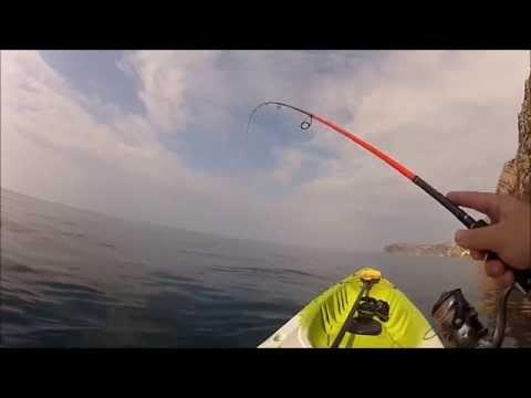 рыбалка пеламида видео