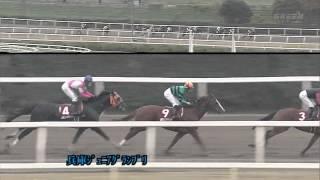2012年兵庫ジュニアグランプリ