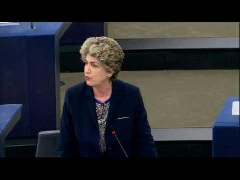 Maria João Rodrigues apresentação do programa de atividades da presidência estónia do Conselho