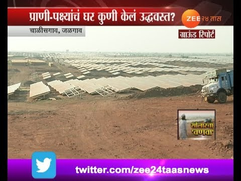 Jalgaon | Chalisgaon Destroying Jungles For Solar Energy Project