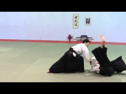Nakamura Shihan Aikido techniques 1