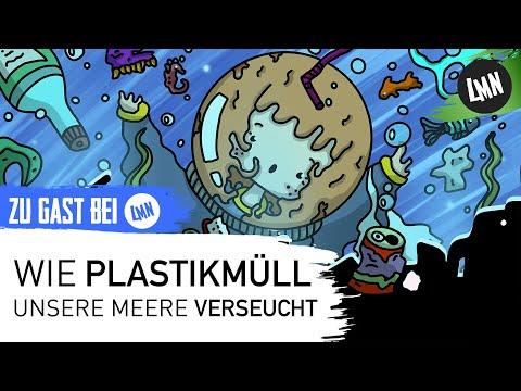 Wie Plastikmüll unsere Meere Verseucht