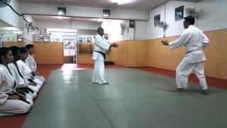 Instructor Series - Ramlan Ortega Sensei