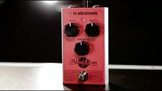 Shop Now: http://www.guitarcenter.com/TC-Electronic/Blood-Moon-Phaser-Effect-Pedal.gc?source=4GOA4LOBAIf classic 1970s phaser tones make your heart beat faster, brace yourself for a sheer heart attack! Blood Moon Phaser resurrects the toothsome phaser sounds of yesteryear and transfuses them with a range of modern features such as top-mounted input/output and true bypass. Infuse your tone with the haunting howls and sacchariferous sweeps convoked by Blood Moon Phaser´s vintage four-stage filter—and get ready to rock out from dusk till dawn!