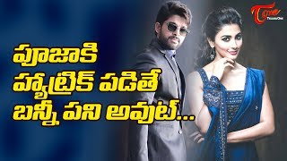 Hat Trick For Pooja Hegde Will Be A Threat For Allu Arjun #FilmGossips