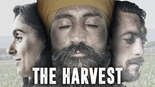 Nonton The Harvest  Official Trailer  Film Subtitle Indonesia Streaming Movie Download