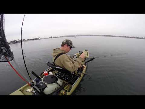 Kayak Fishing Mission Bay: Fun with the Alabama Rig