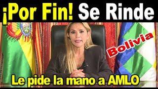 Jeanin Añez pide perdón a AMLO, no pudo con él...