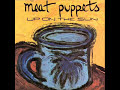 Meat Puppets – Up on the Sun
