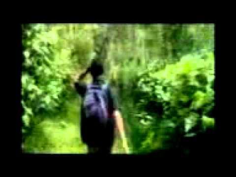 ghost on wayanadu 3gpvideo