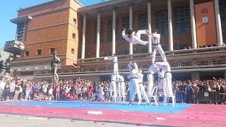 Nonton Taekwondo De Kukkiwon  Exhibicion En Montevideo 2014 Film Subtitle Indonesia Streaming Movie Download