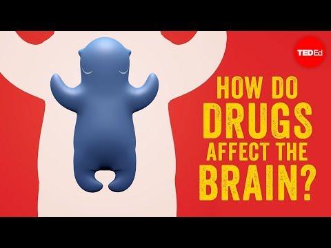 How do drugs affect the brain? - Sara Garofalo