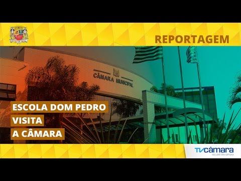 ESCOLA DOM PEDRO DE ALCÂNTARA VISITA A CÂMARA