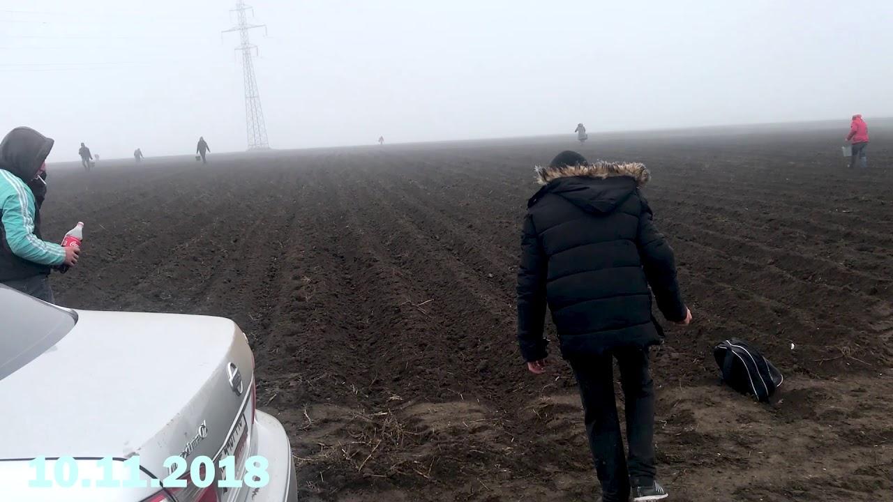 Сезон 2018. 09 и 10 Листопада