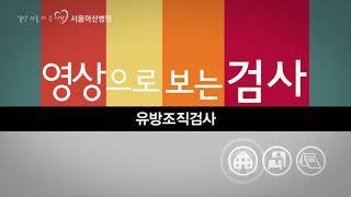유방조직검사 미리보기