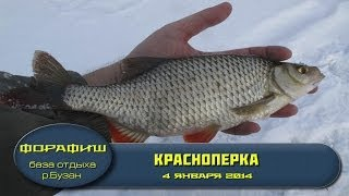 Зимняя рыбалка. Подводная съемка. 3-5 января 2014